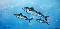 Contemporary abstract painting of  shoal of mackerel